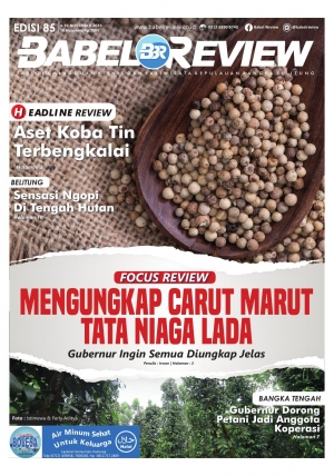 Tabloid BabelReview EDISI 85