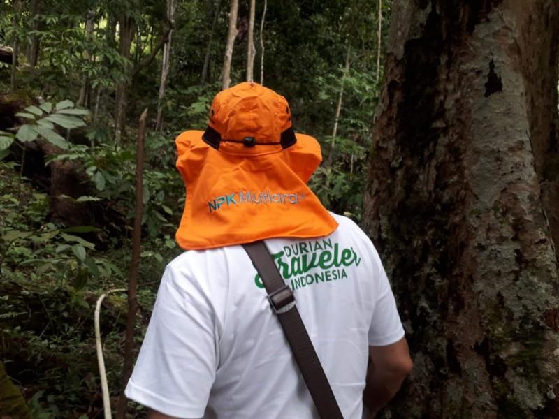 Alamaaak….Durian Bangka Sungguh Lezat, Teriak Wisatawan Ini