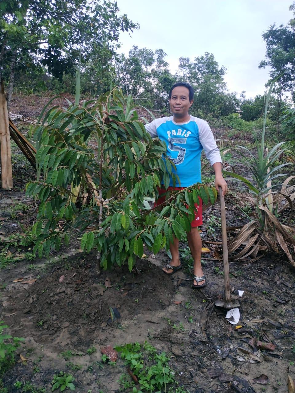 Atasi Rasa Jenuh Di Tengah Pandemi Corona, Anggota Dewan Kader PDIP Ini Lebih Memilih Berkebun