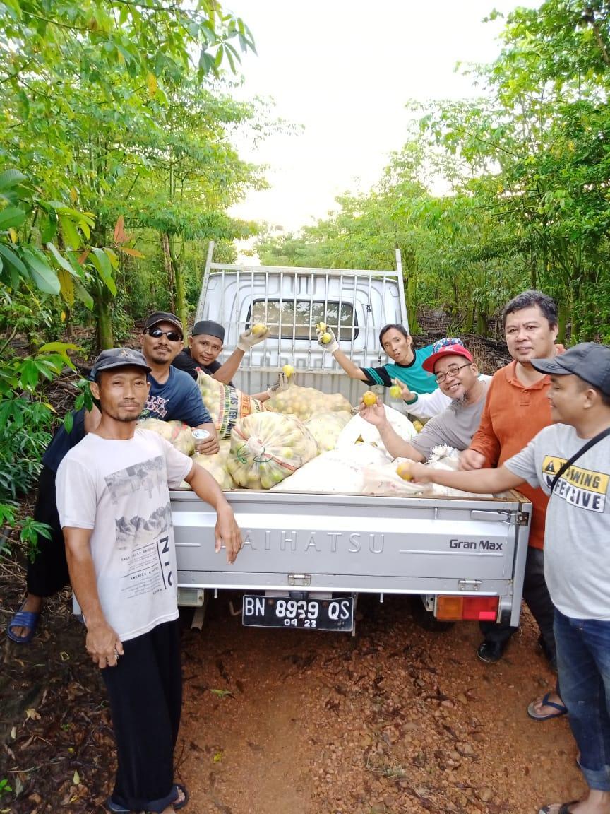 Bangun Kepedulian Di Tengah Teror Coroba, Petani Sedekahkan 1 Ton Jeruk Lemon