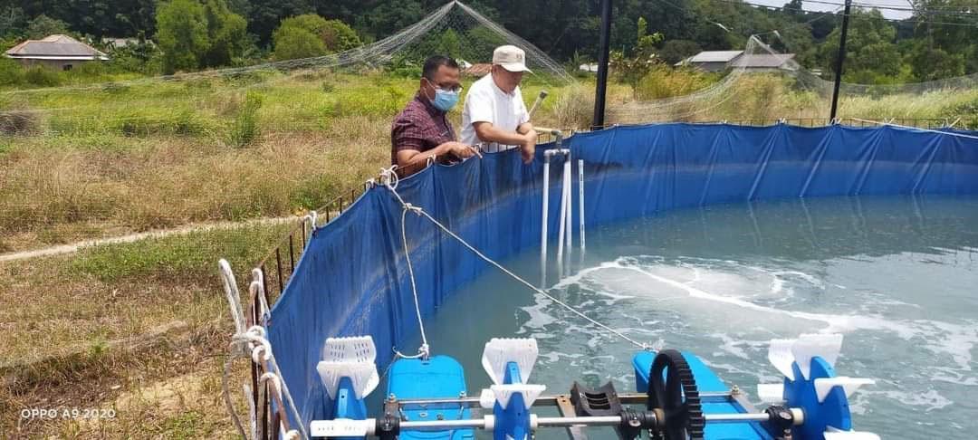 Produksi Ikan Air Tawar di Bangka Tengah Capai 1.537,7 Ton
