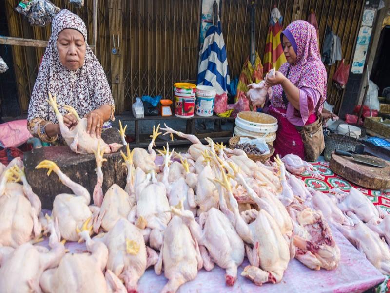 Daging Ayam Ras dan Cabai Dorong Inflasi Juli 2019