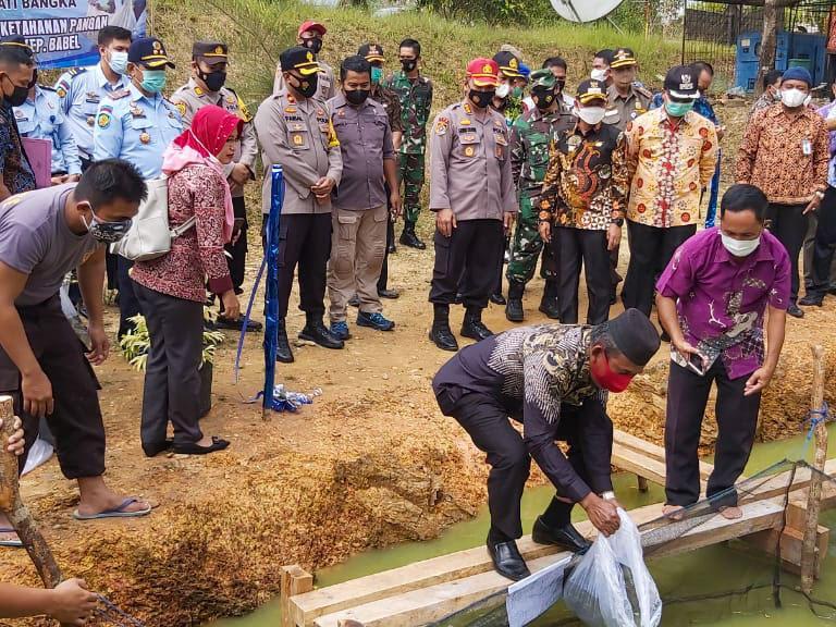 Dukung Program KPN, Pemkab Bangka Tebar Benih 10 Ribu Nila