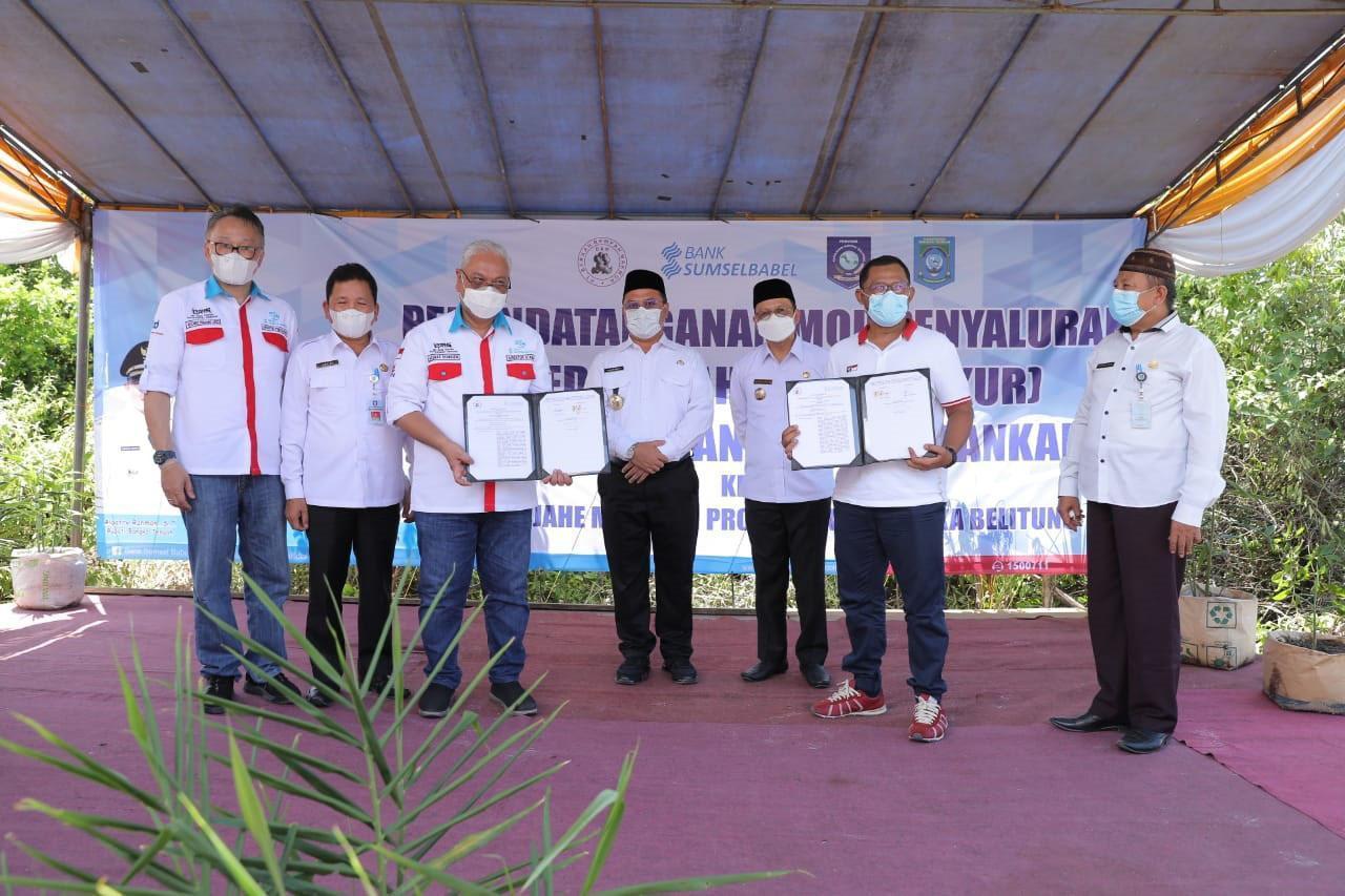 Dukungan Gubernur Erzaldi, Realisasikan Jahe Merah Bangka Tengah