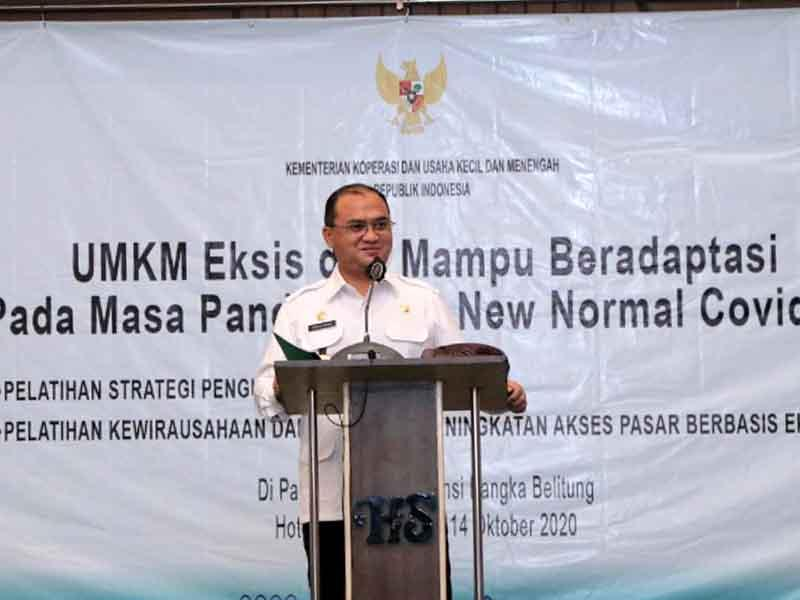 Gubernur Erzaldi Dorong UMKM Babel Bidik Peluang Ekspor Produk