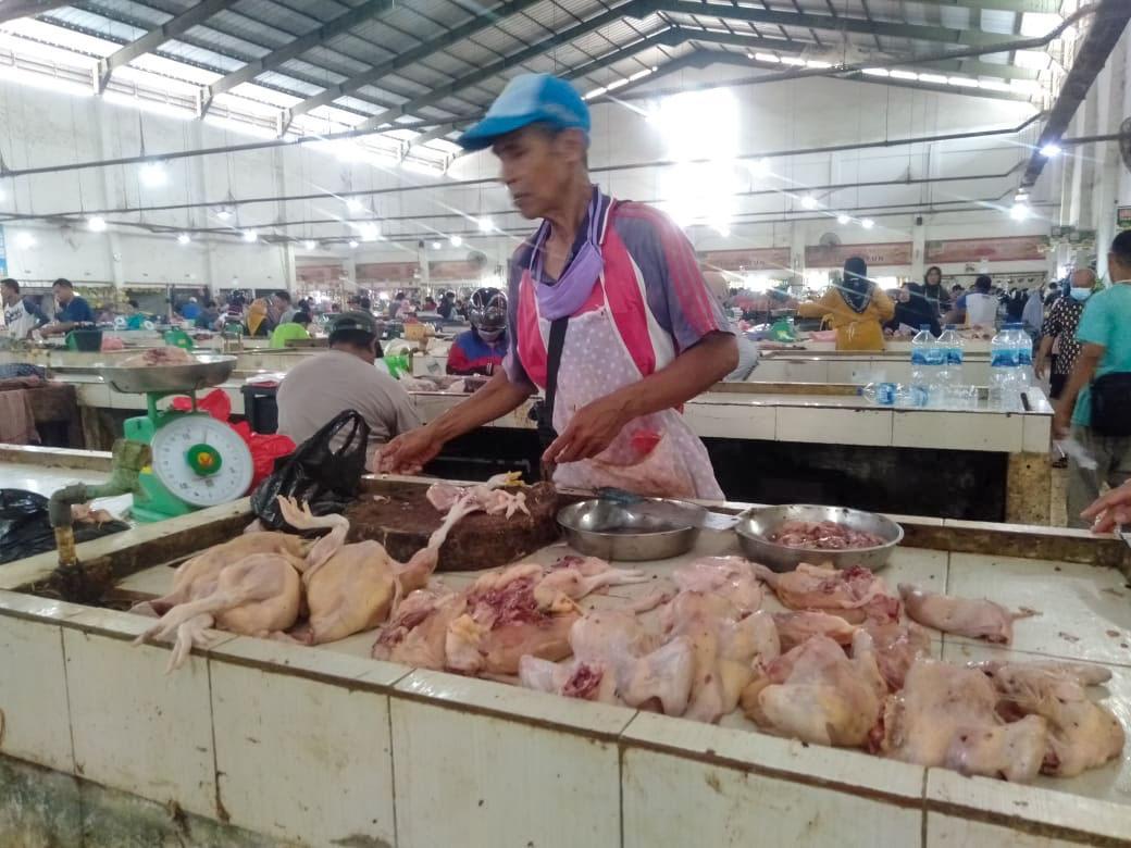 Harga Daging Ayam di Sungailiat Melejit Tembus Rp 40 Ribu Perkilo