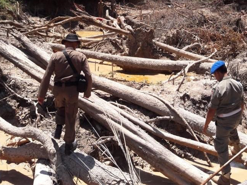 Hutan Menumbing Dirusak Penambang Timah, Wakil Rakyat Minta Polisi Serius Usut Pelaku dan Taibong TI