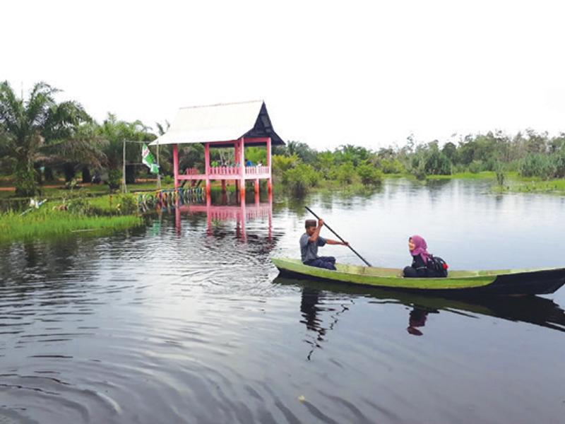 Konservasi Dan Spot Selfie Sungai Upang
