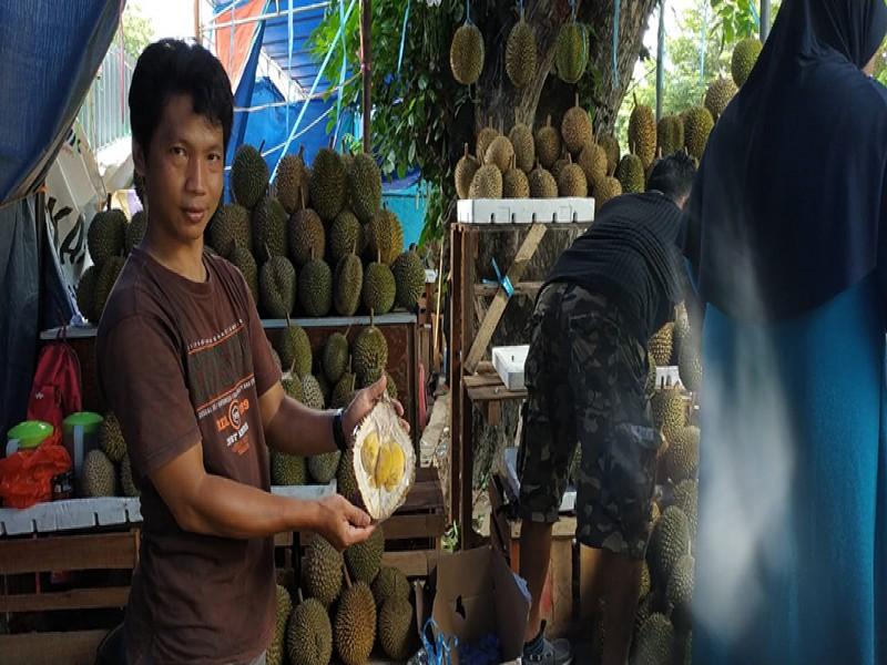 Pangkalpinang Diserbu Penjual Durian, Harga Bisa Mencapai Rp 500.000 per Buah