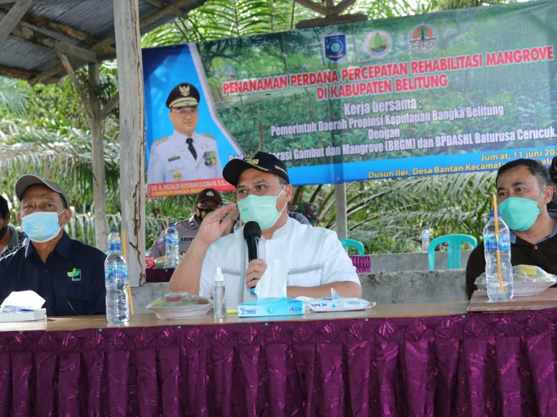 Pastikan Tepat Guna, Kucuran Dana 10 Miliar Rehabilitasi Mangrove Ditinjau Gubernur Erzaldi