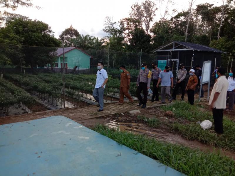 Program Pemberdayaan Sektor Pertanian Untuk Ketahanan Pangan di Tengah Pandemi