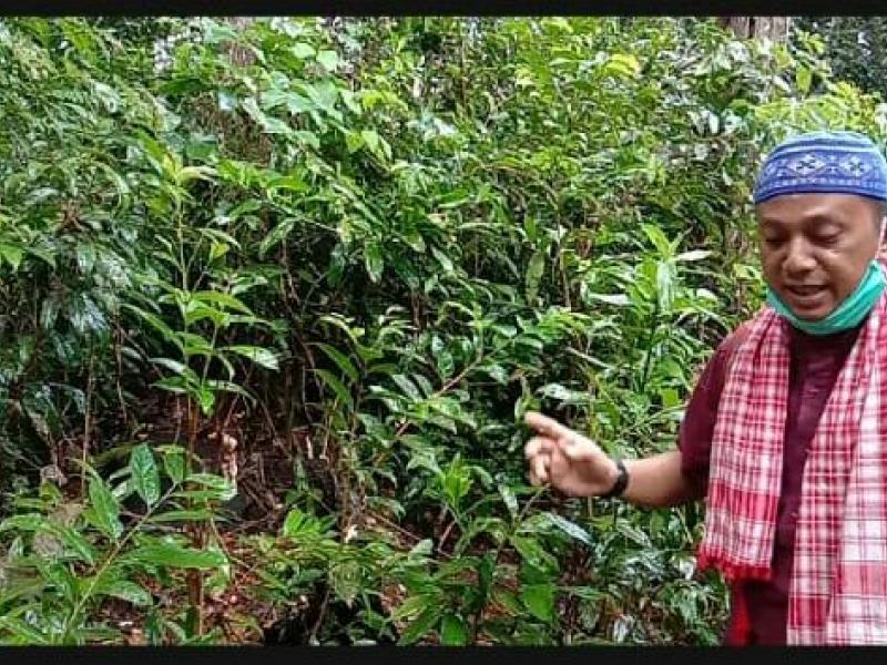Menelusuri kawasan Makam Jati Sari di Kecamatan Simpang Rimba Kabupaten Bangka Selatan Provinsi Kepulauan Bangka Belitung. (Ist)