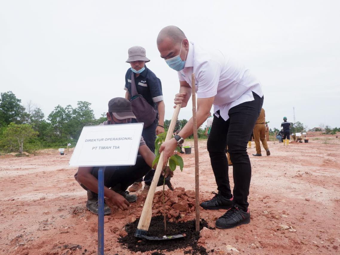 PT Timah Tanam 2.295 Pohon Buah dan Cemara Laut di Lahan Bekas Tambang