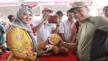 220 Jenis Durian Lokal Babel Berebut Jadi Juara