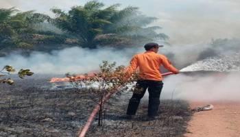 8 Hektare Lahan Dusun Mulia Dilalap Api, Asap Pekat Sebabkan Lakalantas