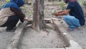 Ada Makam Tanpa Nama Di Samping Batin Samad; Kerabat Sultan Cirebon ataukah Banten?
