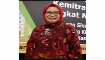 Bangka Utara Mau Jadi Kabupaten Struktur Ekonominya Gimana ?