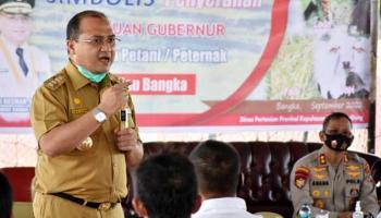 Bantu Permodalan Usaha, Gubernur Erzaldi Sosialisasikan KUR kepada Para Petani