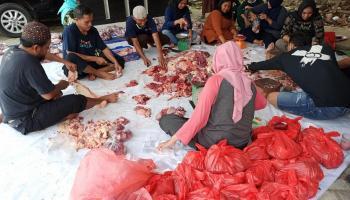Bappeda Babel Potong 4 Sapi 3 Kambing, Daging Qurban Dibagikan untuk Yatim Piatu dan Disabilitas