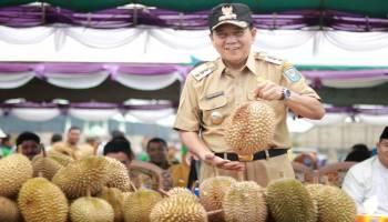 Berlangsung Meriah, Festival Durian Desa Air Mesu Habiskan 2000 Butir Durian