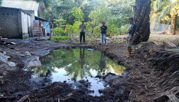 Bocah Lubuk Lingkuk Tewas Tenggelam di Kolam Perkebunan Sawit, Terpeleset Saat Menangkap Bebek