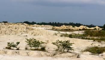 Bumdes Selinsing Ajukan Pengelolaan 62 Hektare Lahan Tambang