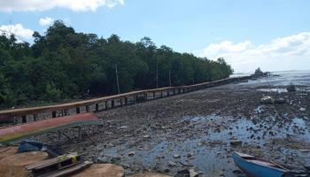 Desa Pusuk Kaya Destinasi Wisata Bahari, Ada Hutan Mangrove Jadi Benteng Desa