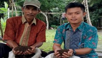 Desa Tebing Produksi Kompos Kotoran Sapi