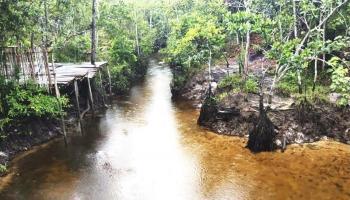 Desa Terong, Desa Wisata Kreatif Kelas Dunia