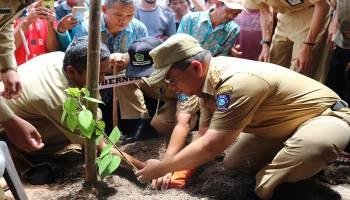 Dukung Kejayaan Lada, Gubernur Babel Tanam Bibit Lada di Payung