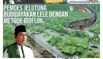 Fokus Pemberdayaan, Pemdes Jelutung Kembangkan Budidaya Lele Dengan Metode Bioflok