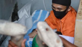 FOTO Adegan Pembunuhan Pengemudi Ojol dalam Rekonstruksi di TKP (Bagian 2)