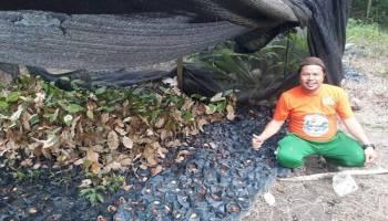Geliat Zaiwan Wujudkan Wisata Kebun Raya Bangka di Desa Namang