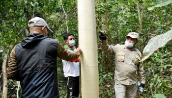 Gubernur Babel Sosialisasi Teknik Okulasi Kepada Petani Gaharu