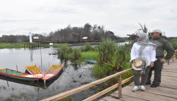 Gubernur Bersama Istri Berselfie Ria di Objek Wisata Biodiversity Sungai Upang, Indahnya Spot Jembatan Kayu