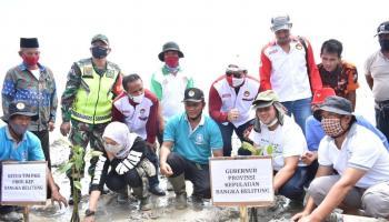 Gubernur Erzaldi Ajak Warga Riding Panjang Kembangkan Kepiting Bakau