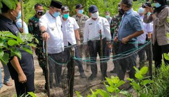 Gubernur Erzaldi Arahkan Penangkaran Penyu Guntung Jadi Wisata Edukasi