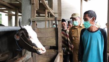 Gubernur Erzaldi Beri Motivasi untuk Kembangkan Komoditi Pendukung