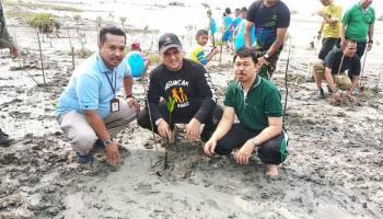 Gubernur Erzaldi Ikut Menanam Mangrove di Pantai Rebo
