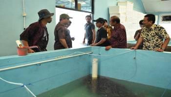 Gubernur Erzaldi Rosman Tingkatkan BBI Tanjung Rusa untuk Masyarakat