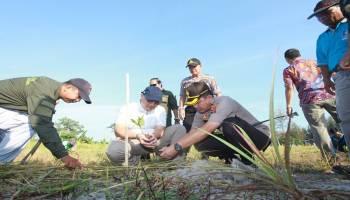 Gubernur Targetkan Penanaman Mangrove dan Jambu Mete Sebanyak 1,2 Juta Pohon