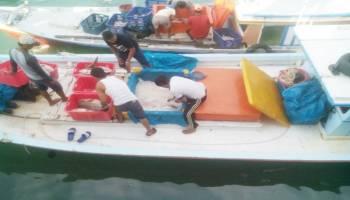 Hasil Tangkapan Ikan Nelayan Sungailiat Mengalami Peningkatan