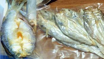 Ikan Asin Gelamo Angew Banyak diminati
