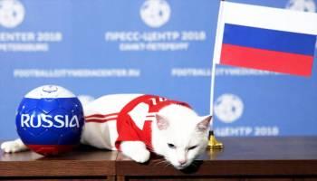 Ini Hewan Peramal Piala Dunia Rusia 2018