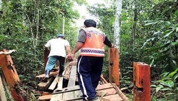 Kembalikan Keindahan Hutan Pelawan Namang