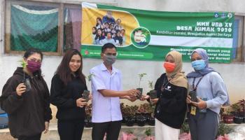 KKN UBB Desa Kimak Tanam 1.000 Pohon