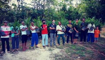 Komunitas Belilik Serahkan Bantuan Bibit Kelapa Sawit kepada Poktan Dam Jaya