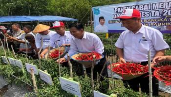 Lubuk Pabrik Sukses Kembangkan Potensi Pertanian, Ibnu : Pemkab Bateng Akan Gencarkan Metode Ma11