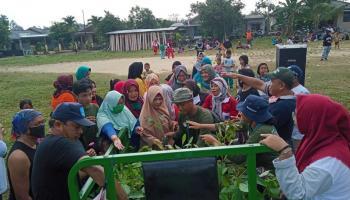 Mahasiswa KKN UBB Desa Karya Makmur Bagikan 2.000 Bibit Buah-Buahan