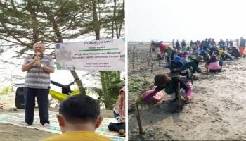 Mahasiswa MSP UBB Tanam Mangrove, Rektor Sebut Ini Cara Kita Perbaiki Ekosistim
